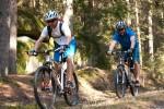 Mountainbiken und viele Wanderwege in und um Litschau