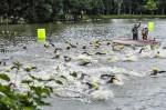 Triathlon Herrensee